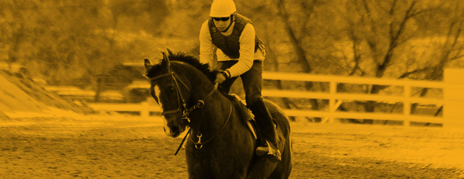 Exercise Rider racing a horse